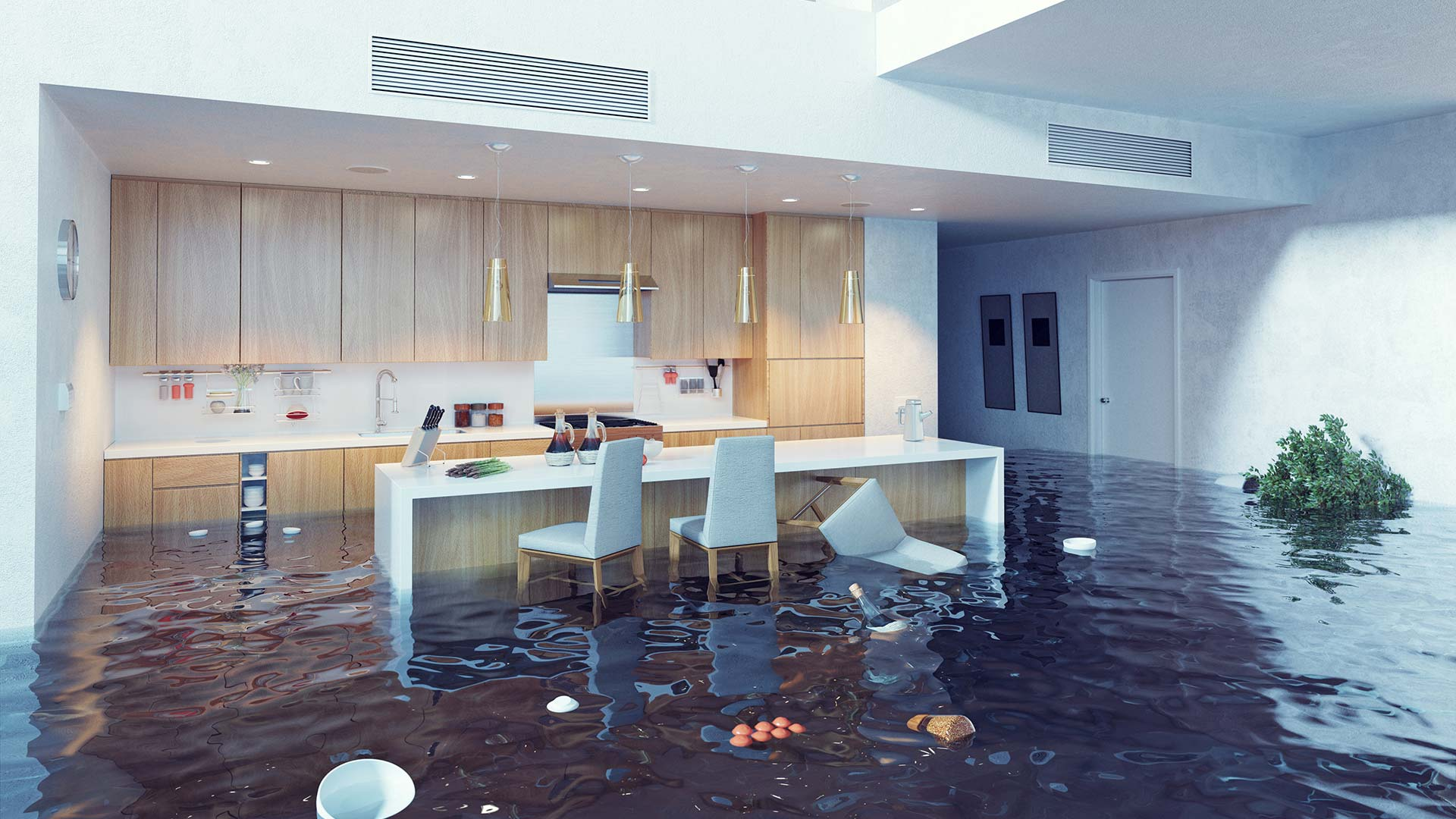 Flooded home in Plant City, FL.