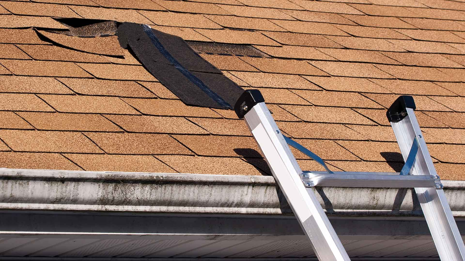 Why You Need to Fix Your Leaky Roof Now