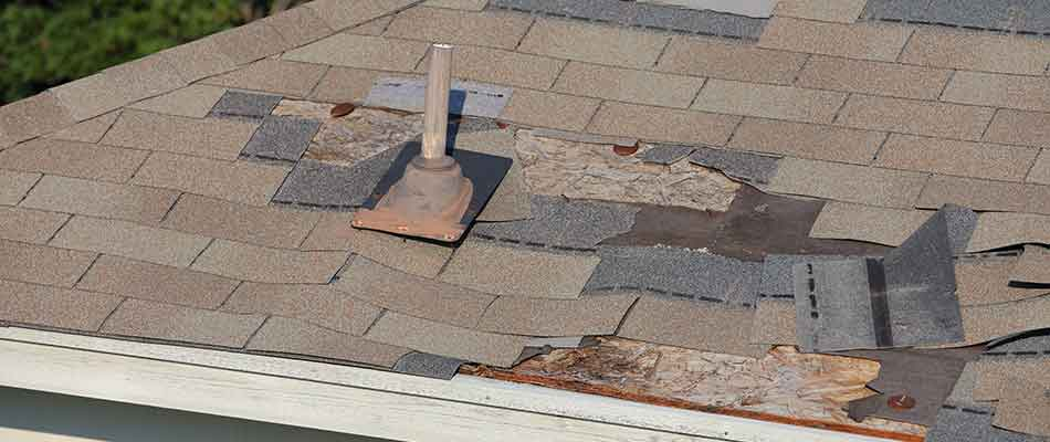 Damaged roof shingles at a Plant City, FL property.