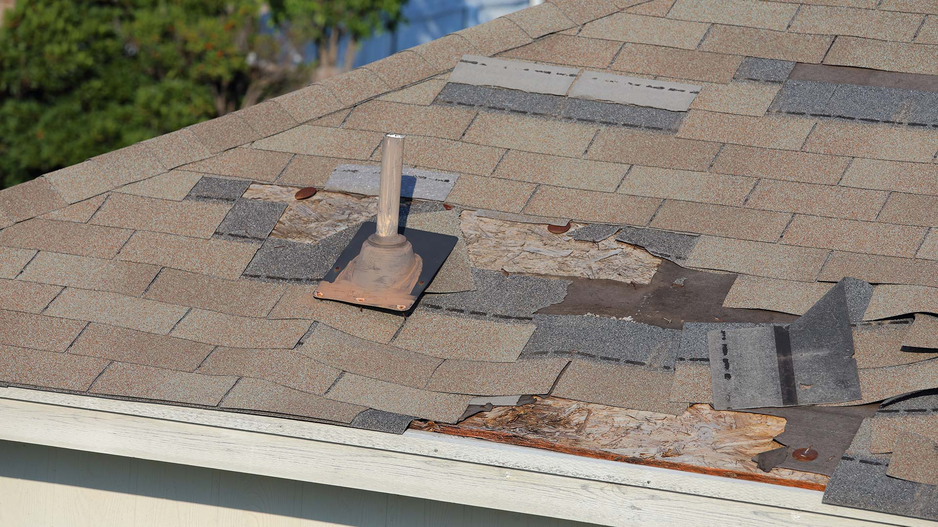What Are Some Indicators of a Roof Leak?