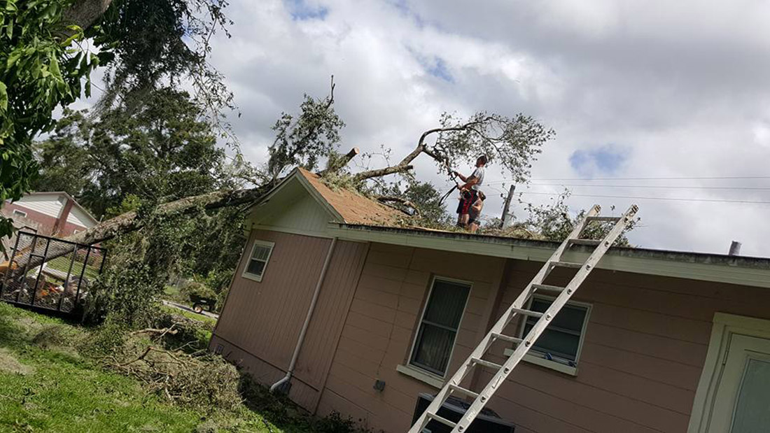 Tree through roof of the Hunsberger's home in Lakeland, FL during Hurricane Irma.